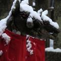 Photos: 寒いよう