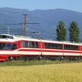 写真: 長野電鉄 1000系電車