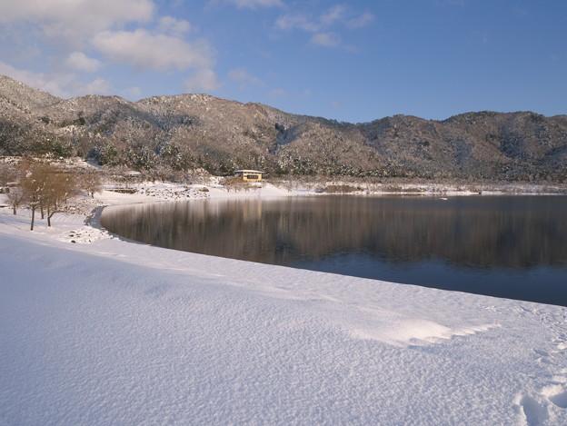 写真: 冬のダム湖畔にて