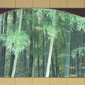 Photos: 1705110131額入りの竹林