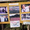 Photos: 171009 (62)ひよっこ看板