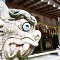 写真: 貴船神社 奥宮の吽形の狛犬