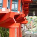写真: 朱色の灯籠と七夕飾り