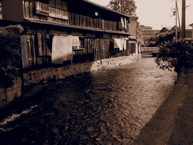 写真: 白川沿いの家~2~