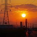 写真: 夕日に向かって~