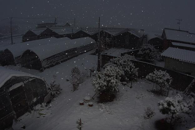 大雪警報!