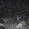 写真: 雪夜こんこん!