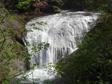170517-07白扇の滝