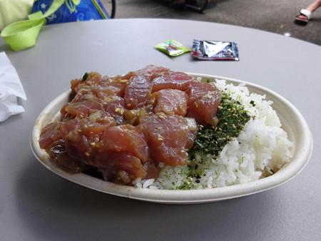 171004-01ポケ丼
