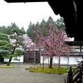 醍醐寺三宝院お庭
