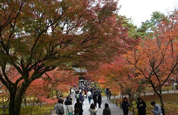 南禅寺は人が多い