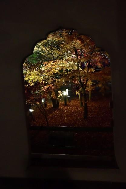 写真: 黄葉も散り落ちにけり火打窓