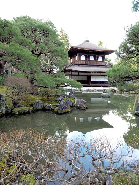 写真: 冬の銀閣寺