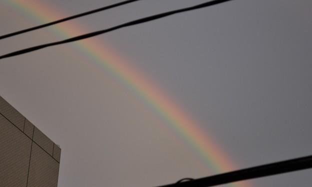 写真: 一瞬の虹