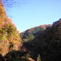 写真: '12紅葉狩 冬晴れ