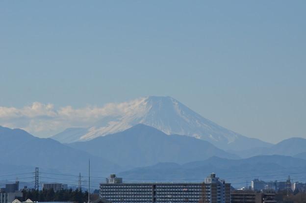 写真: 富士山を探して