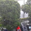 Photos: 驟雨