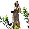 マニラ湾今日の慰安婦像