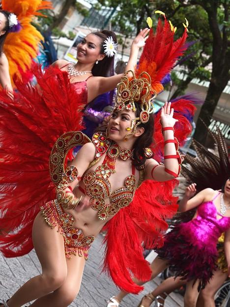 カーニバルの舞姫 *a