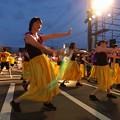 写真: わくわく踊りの蝶 *a