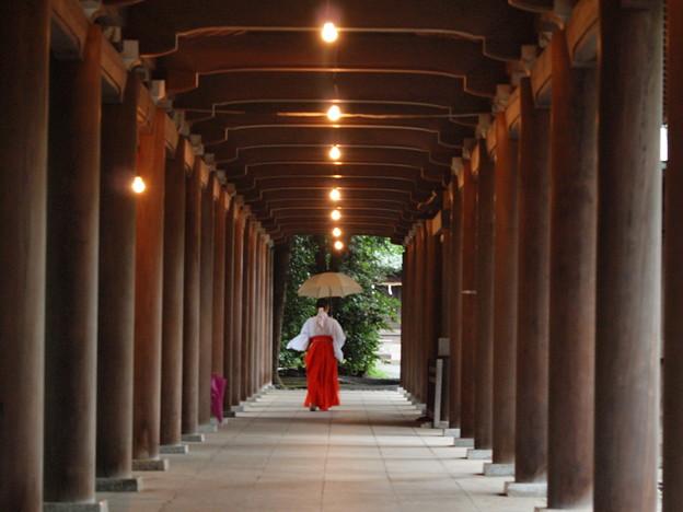 Photos: 雨降る日の回廊 *a