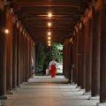 写真: 雨降る日の回廊 *b