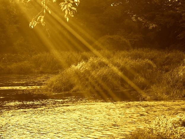 写真: 夕陽を浴びる湧水源