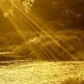 Photos: 夕陽を浴びる湧水源