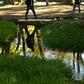 写真: 水面に映える秋色 *a