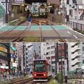 写真: 路面電車、今昔