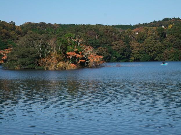 一碧湖の秋 *c