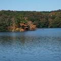 写真: 一碧湖の秋 *c