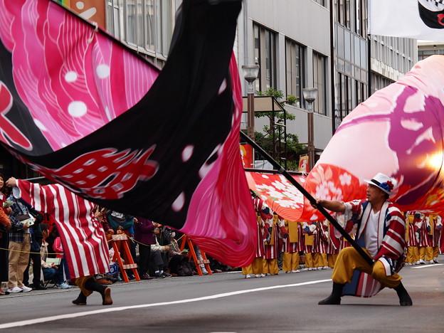 Photos: よさこい東海道2017 *c