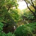 ちょっとは秋色した小浜池