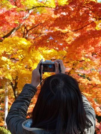デジカメの中の秋景色