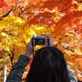 写真: デジカメの中の秋景色