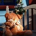 写真: クマさん達のクリスマス *a