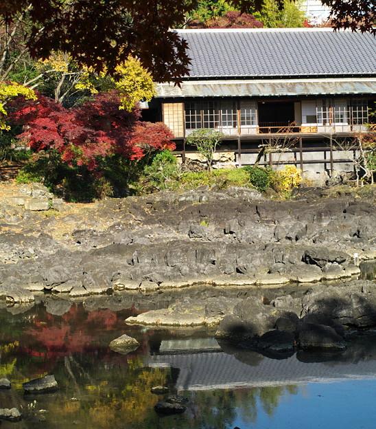 小浜池に映える秋色
