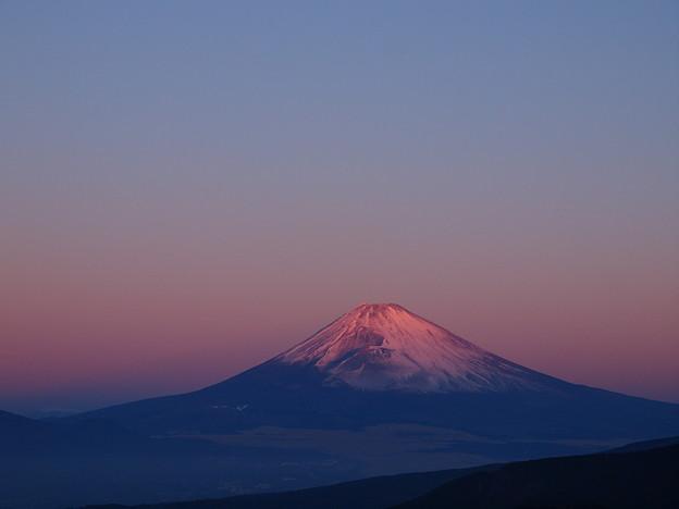 写真: 元旦の朝陽を浴びる富士