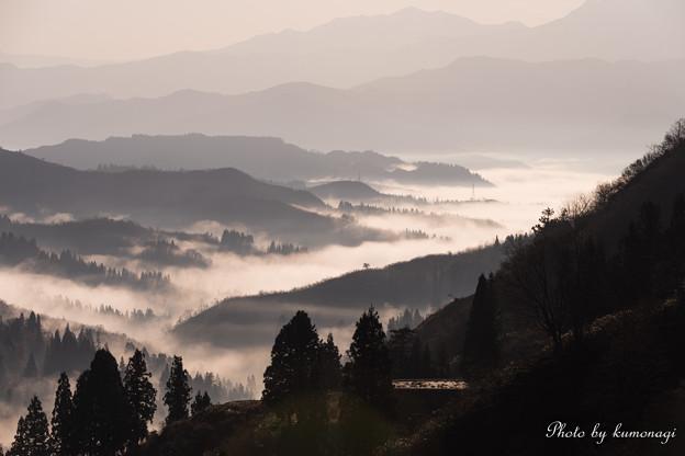 霧は続くよ、どこまでも…。