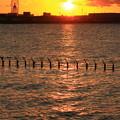Photos: 東京湾に陽が沈む