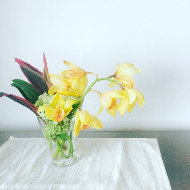 Photos: yellor flower