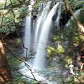Photos: 乙女の滝