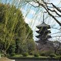 写真: 春の風 H29,4,2