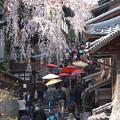 写真: 京都、清水寺(1)三年坂 H29,4,5