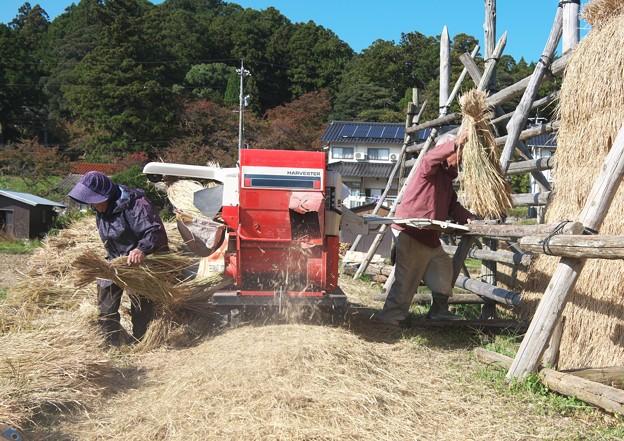 脱穀作業 H29,10,26