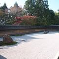 京の紅葉、龍安寺(5)