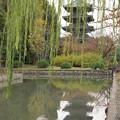 東寺と五重塔(1) H29,11,20