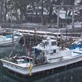 小雪の港(1)H29,12,17