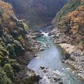 Photos: 嵐山保津峡川下り